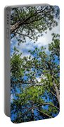 Colorado Skies Portable Battery Charger