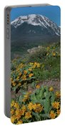 Colorado Spring Wildflower And Mountain Portrait Portable Battery Charger by Cascade Colors