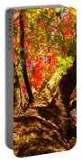 Colorful Autumn Abstract Portable Battery Charger by James BO  Insogna