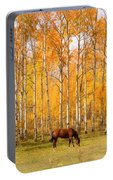 Colorful Autumn High Country Landscape Portable Battery Charger