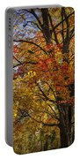 Colorful Autumn Tree In Southwest Michigan By Gun Lake Portable Battery Charger