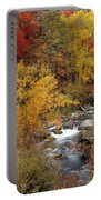 Colorful Canyon Portable Battery Charger