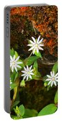 Colorful Chickweed Portable Battery Charger