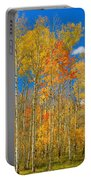 Colorful Colorado Autumn Landscape Portable Battery Charger