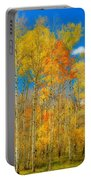 Colorful Colorado Fall Foliage Portable Battery Charger