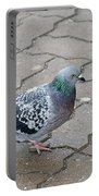 Colorful Dove Portable Battery Charger