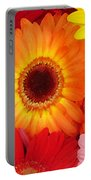 Colorful Gerber Daisies Portable Battery Charger