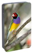Colorful Gouldian Finch Portable Battery Charger