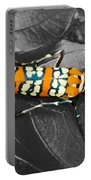 Colorful Insect - Ornate Bella Moth Portable Battery Charger