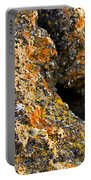 Colorful Lichens Portable Battery Charger