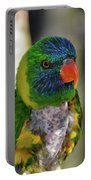 Colorful Lorikeet Portable Battery Charger