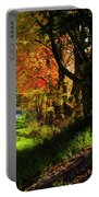 Colorful Maples Portable Battery Charger