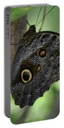 Colorful Markings On A Blue Morpho Butterfly On A Tree Trunk Portable Battery Charger