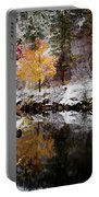 Colorful Pond Portable Battery Charger