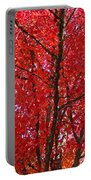 Colorful Red Orange Fall Tree Leaves Art Prints Autumn Portable Battery Charger