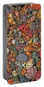 Colorful Rocks In Stream Bed Montana Portable Battery Charger by Jennie Marie Schell