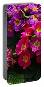 Colorful Spring Primrose By Kaye Menner Portable Battery Charger