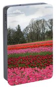 Colorful Tulips Blooming At Tulip Festival Portable Battery Charger
