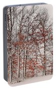 Colorful Winters Day Portable Battery Charger