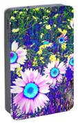 Colormax 2 Portable Battery Charger