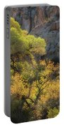 Colors Of Autumn In The Sonoran  Portable Battery Charger