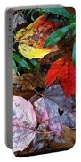 Colors Of The Fall Portable Battery Charger