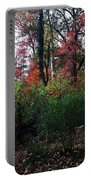 Colors Of The Forest Portable Battery Charger
