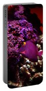 Colors Of Underwater Life Portable Battery Charger