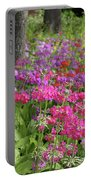 Colourful Primula Candelabra At Wisley Gardens Surrey Portable Battery Charger