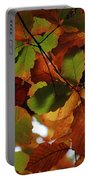 Colours Of Fall II Portable Battery Charger