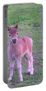 Colt Pony Portable Battery Charger