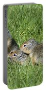Columbian Ground Squirrels Portable Battery Charger