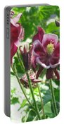 Columbine #2 Portable Battery Charger