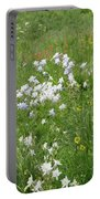 Columbine Cluster Portable Battery Charger