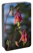 Columbine Sentinals Portable Battery Charger