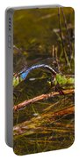 Come Along With Me Dragonflies Portable Battery Charger