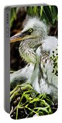 Come On Feathers Portable Battery Charger