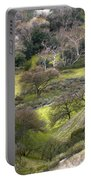 Coming Down The Hill Portable Battery Charger