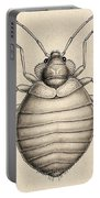 Common Bedbug, Cimex Lectularius Portable Battery Charger