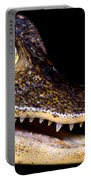Common Caiman Portable Battery Charger
