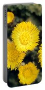 Common Coltsfoot  Portable Battery Charger