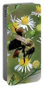 Common Eastern Bumblebee  Portable Battery Charger