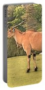 Common Eland Portable Battery Charger