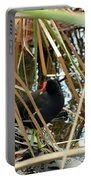 Common Gallinule Portable Battery Charger