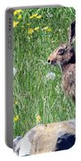 Common Hare Portable Battery Charger