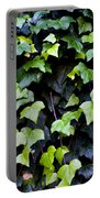 Common Ivy Portable Battery Charger