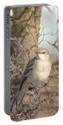 Common Mockingbird Portable Battery Charger