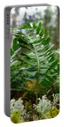 Common Polypody Portable Battery Charger