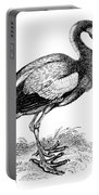 Common Stork Portable Battery Charger