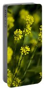 Common Wintercress Flowers Portable Battery Charger
